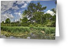 Summer Time At Moraine View State Park Greeting Card