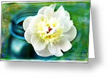 Summer White Greeting Card