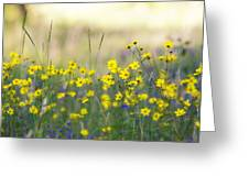 Summer Wildflowers On The Rim  Greeting Card