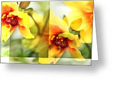 Summer Yellow Two Greeting Card by Cathie Tyler