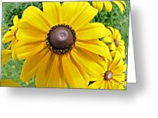 Summers Bloom Greeting Card by Susan Leggett