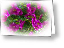 Summers Flowers Greeting Card