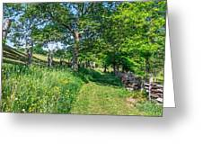 Summertime At The Farm Greeting Card