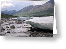 Summertime Ice Greeting Card