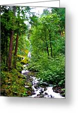 Summertime In The Cascades Greeting Card