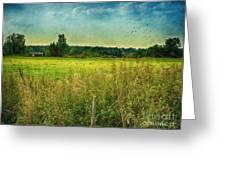 Summertime Greeting Card by Jutta Maria Pusl