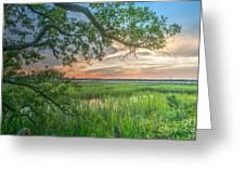 Summertime Sunset Greeting Card