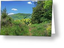 Summertime Trail At The Gap Greeting Card