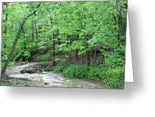 Summertime Walnut Creek Greeting Card