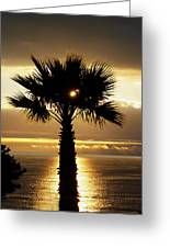Sun And Palm And Sea Greeting Card