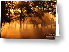 Sun Beams Greeting Card