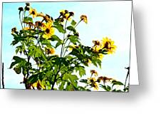 Sun Flowers In The Sun Greeting Card