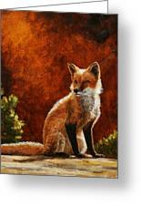 Sun Fox Greeting Card