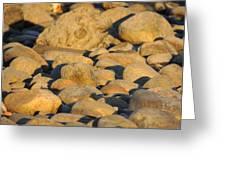 Sun Kissed Rocks Greeting Card