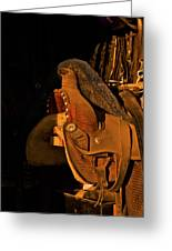 Sun On Leather Horse Saddle In Tack Room Equestrian Fine Art Photography Print Greeting Card