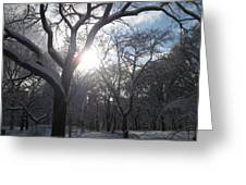 Sun Over The Park Greeting Card