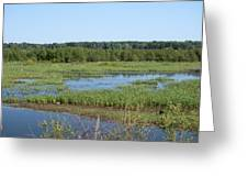 Sun Over Wetland Greeting Card