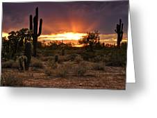 Sun Rays Over The Sonoran Desert  Greeting Card