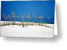 Sun Sand Surf Greeting Card