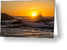Sun Splash Greeting Card