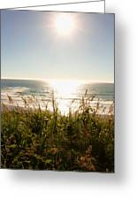Sun Star At The Beach Greeting Card