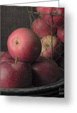 Sun Warmed Apples Still Life Square Greeting Card