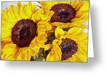 Sun Worship Greeting Card