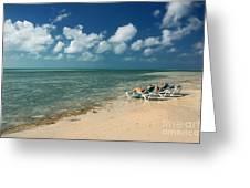 Sunbathers On The Beach Greeting Card