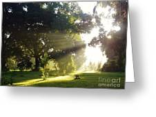 Sunbeam Landscape Greeting Card