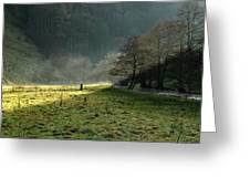 Sunbeams And Mist - Wolfscote Dale Greeting Card