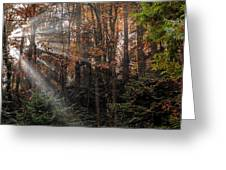 Sunbreak Greeting Card