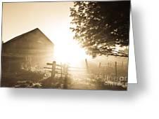 Sunburst On The Farm Greeting Card