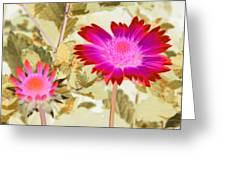Sunburst - Photopower 2251 Greeting Card