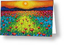 Sunburst Poppies Greeting Card