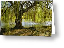 Sunday In The Park Greeting Card
