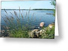 Sunday Morning River Walk Greeting Card by Margaret McDermott