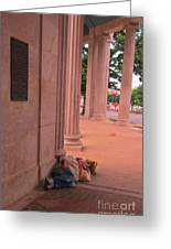 Sunday Mourning At Denver Civic Centre Greeting Card