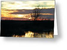 Sundown Lacassine Nwr Greeting Card