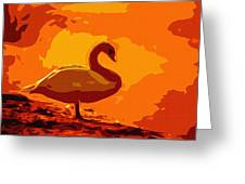 Sundown Swan Greeting Card