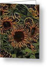 Sunflower 18 Greeting Card