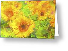 Sunflower 19 Greeting Card