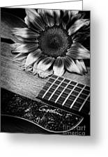 Sunflower And Guitar Greeting Card