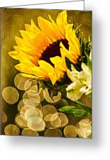 Sunflower And The Lights Greeting Card