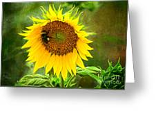 Sunflower And Visitors Greeting Card