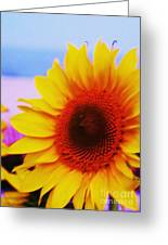 Sunflower At Beach Greeting Card