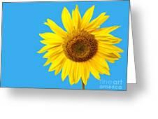 Sunflower Blue Sky Greeting Card