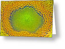Sunflower Center Greeting Card