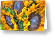 Sunflower Delight Greeting Card