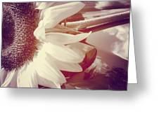 Sunflower Digital Art Greeting Card