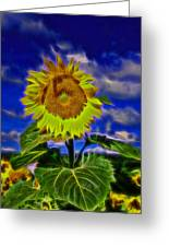 Sunflower Electrified Greeting Card